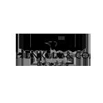 logo-henkell-trocken-co